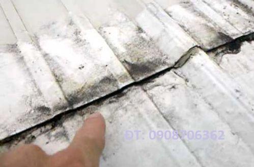 Thợ chống thấm tường chống dột mái tôn